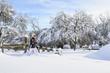 Wandern in verschneiter Landschaft