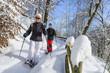 Winter-Wanderung - 70933212