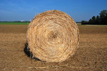 Meule de Foin dans un champ de blé