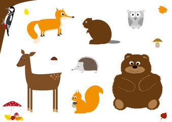 zwierzęta leśne - wektory