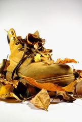 Scarpone sulle foglie d'autunno