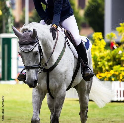 Fotobehang Paardrijden Horse jumping competition