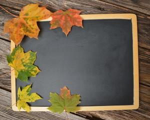 Textfreiraum Tafel mit Herbstlaub