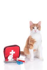 Rotweiße Hauskatze sitzt neben Erste Hilfe Set