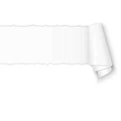 ripped open white paper with paper curl
