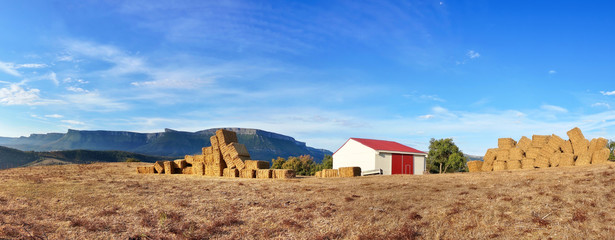 panorama with farm bales