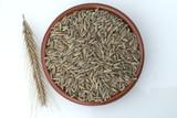 Roggenaehre; Roggen; Roggenaehren; Secale; Cereale;