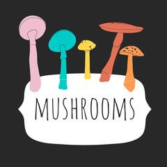 Set of flat vector mushrooms. Cute hand drawn illustration