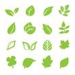 leaf icon - 70946877