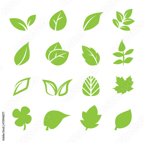 leaf icon poster