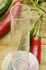 Capsicum Paprika Papryka Chili Стручковый перец Expo Milano 2015
