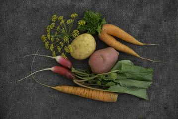 Картофель, морковь и редиска