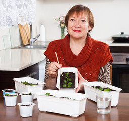 Mature woman working with seedlings