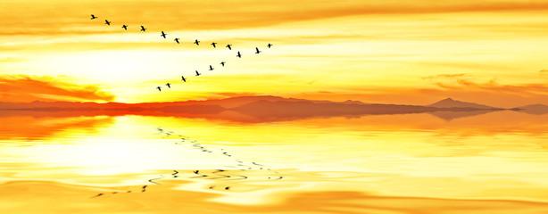 panoramica del una amanecer dorado