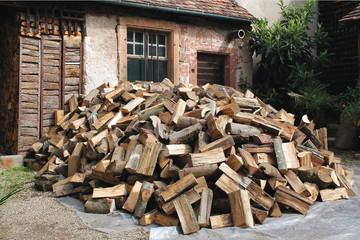 tas de bois coupé kazy_6527