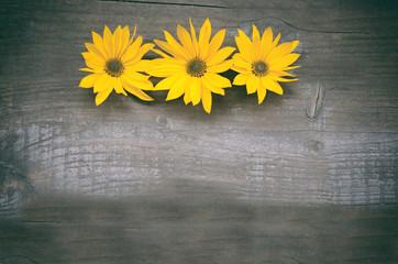 Blumen, gelb, Hintergrund Holz