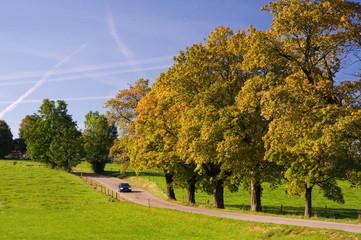 Herbstlandschaft im bayrischen Oberland