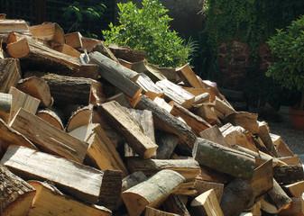 bois coupé en vrac kazy_6542