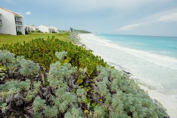 ricezione turistica bungalow mare dei caraibi cuba