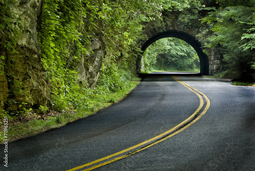 Tuinposter Openbaar geb. Smoky Mountain Tunnel
