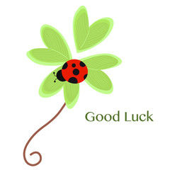Good Luck greeting card with clover and ladybird vector