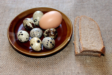 some eggs of the quail and hen with pieces of bread
