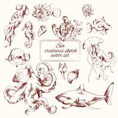 Sea creatures sketch