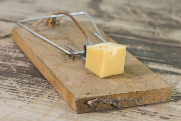Mousetrap 2