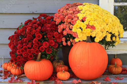 Poster Autumn and Thanksgiving decoration