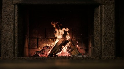Slow motion fireplace burning.Slow motion 120 fps.
