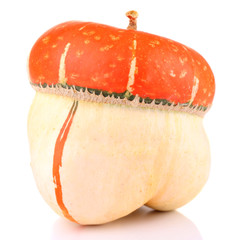 Red ornamental pumpkin isolated on white