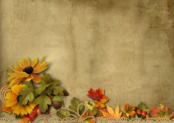 Vintage background with beautiful border autumn decorations