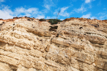 Cliff with sloping sedimentary earth layers