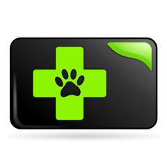 soins vétérinaires sur bouton web rectangle vert
