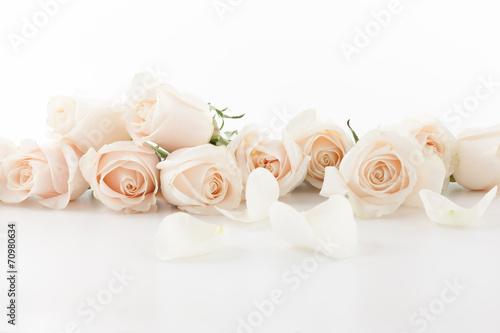 Foto Murales White roses and petals
