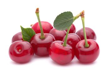 Cherry fruit group