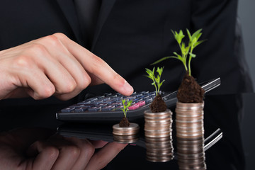 Businessman Using Calculator By Stacked Coins With Plants