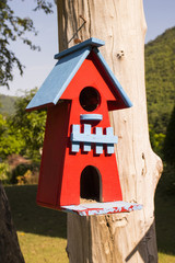 Colorful bird house hanging on the tree trunk