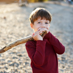 Little boy holding branch