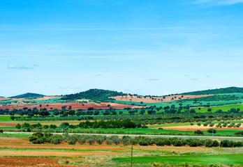 picturesque fields in Spain