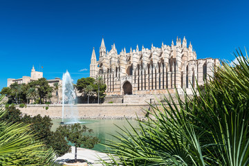 XXX - Kathedrale La Seu mit Palmwedel - Mallorca - 4108