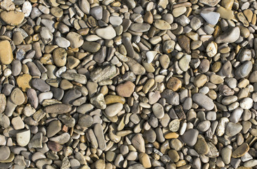 rocks background