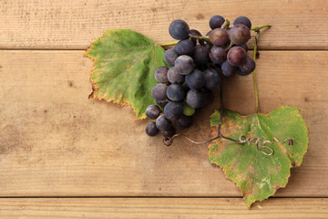 Concord grape with wine leaves on wood background