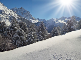 Snowy landscape with sunshine and pine trees in the Alps, France