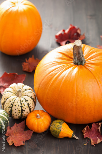canvas print picture decorative pumpkins and autumn leaves for halloween
