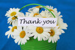 Thank you card with white daisies on blue background