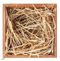 Hay in box