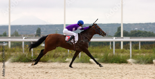 canvas print picture Horse racing.