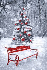 Winter Christmas background. Scene with red element. Concept gra