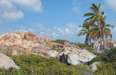 On tropical island. Virgin-Gorda, Tortola